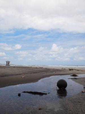 薄磯海岸2012年6月25日