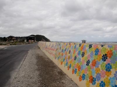 薄磯海岸の花の絵2012年6月25日