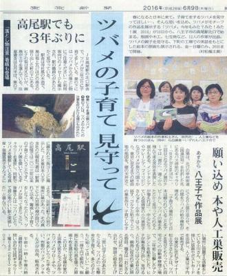 ツバメ展-東京新聞20160609