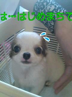 100619_1450~0100010001.jpg