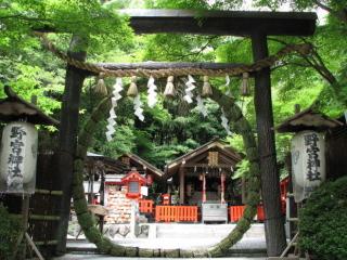 京都・嵯峨野の縁結びの神様 野宮神社