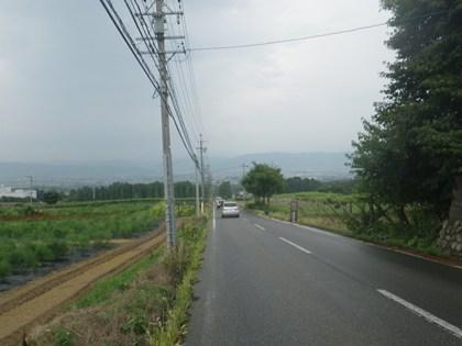 p_112.jpg