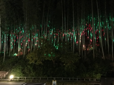 竹 クリスマス イルミネーション
