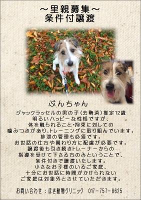 ぶん (1).JPG