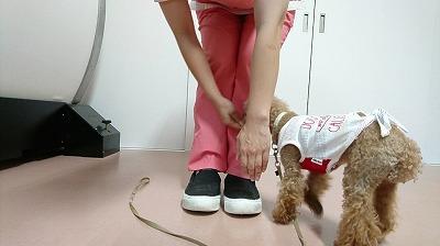 VIDEO_20190722_152600_000237.jpg