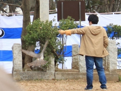 赤塚梅まつり(2)