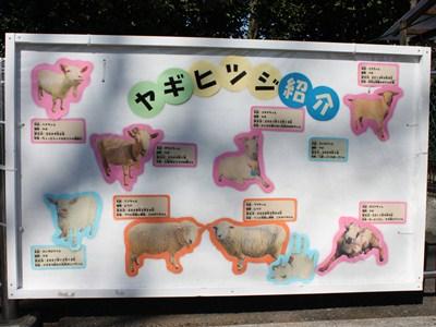 区立こども動物園高島平分園