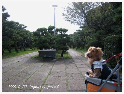城ヶ島公園だよ。