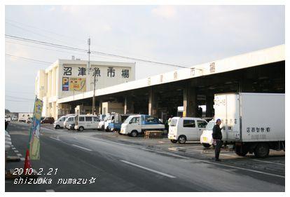 沼津魚市場。