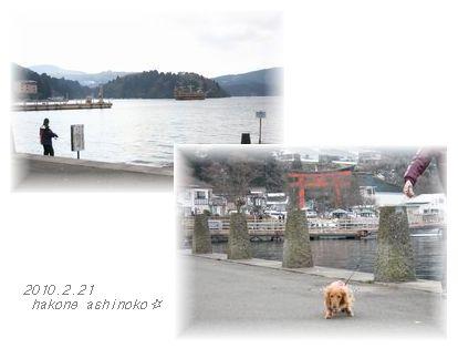芦ノ湖さんぽ〜。