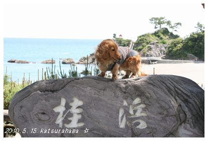 龍馬の桂浜〜。