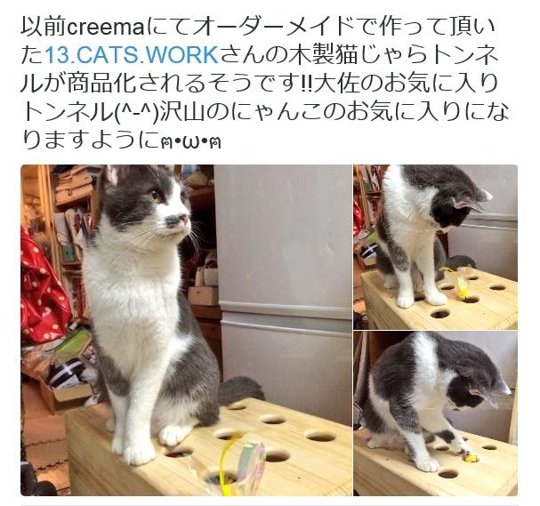13.CATS.WORKSオリジナル猫じゃらトンネルレビュー