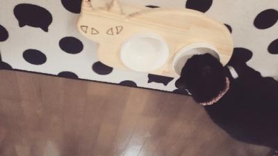 13.CATS.WORKSオリジナルネコ型フードテーブルミニサイズ