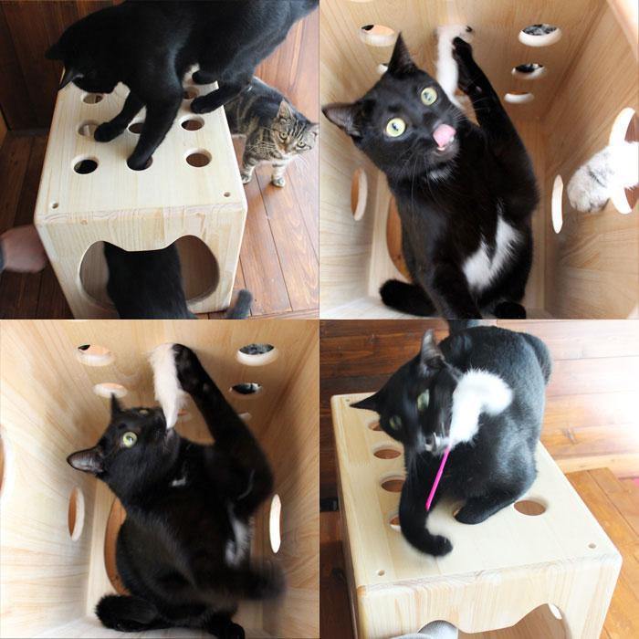 木製猫ハウス第2弾「猫じゃらトンネル」・13.CATS.WORKSオリジナル