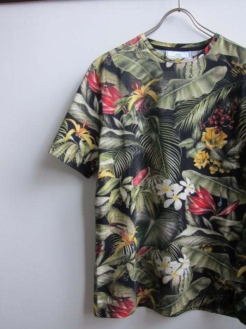 ami アミ Tシャツ 1.jpg