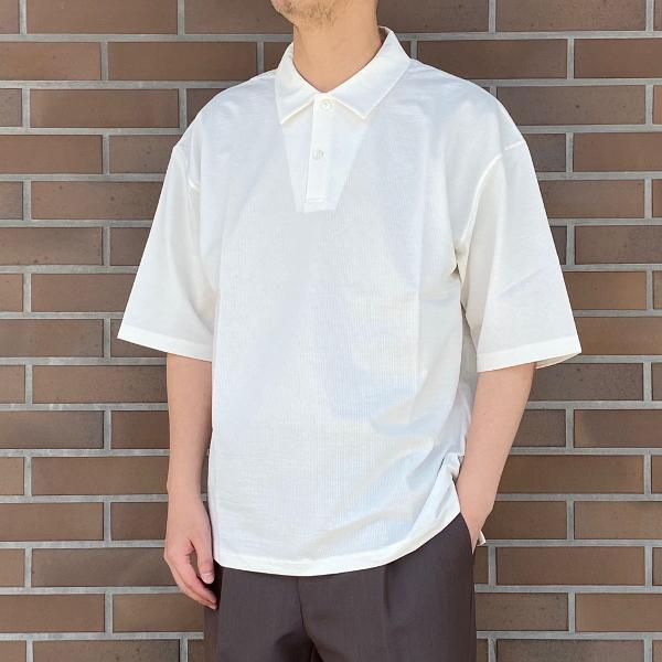 WEWILL ウィーウィル シアサッカー ポロシャツ 6.jpg