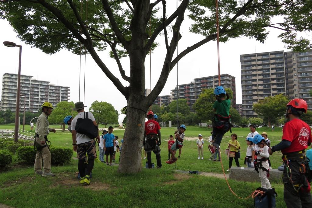 ロープで木に登ろう