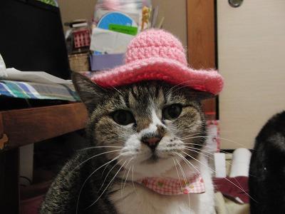 もも色帽子
