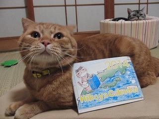 ひこ屋さんカレンダー
