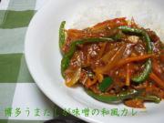 博多うまだしが味噌の和風カレー