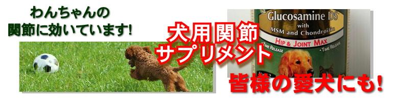 犬用グルコサミン・コンドロイチン・MSM