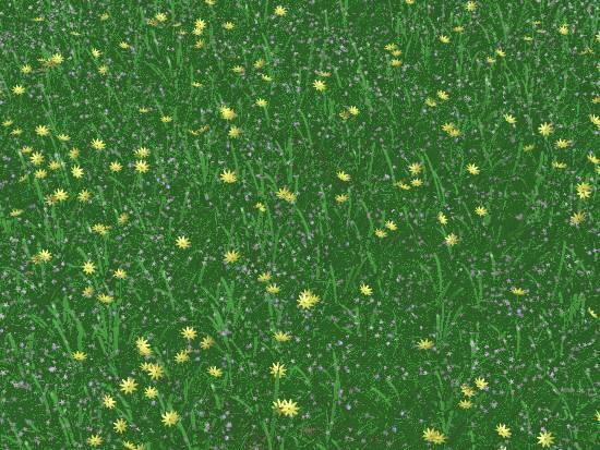 花の咲く草原クローズアップ