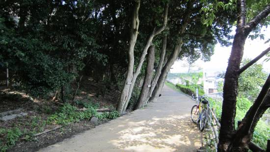 伊丹緑道(2)