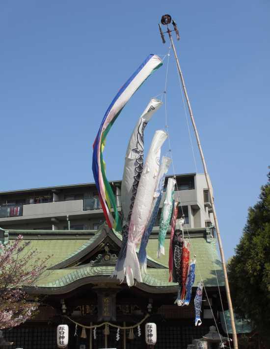 塚口神社 鯉のぼり