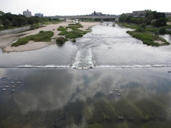 上武庫橋下流