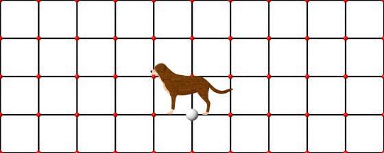 dog_model_POV_scene_w560h224q30.jpg