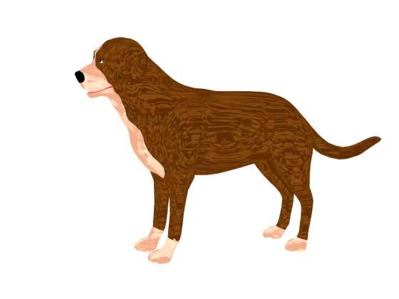 dog_model_POV_scene_2014-07-15_w560h420q30.jpg