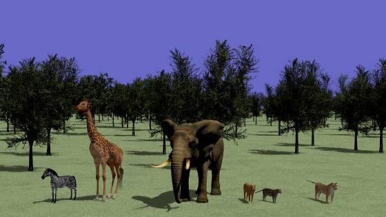 森と草原と動物