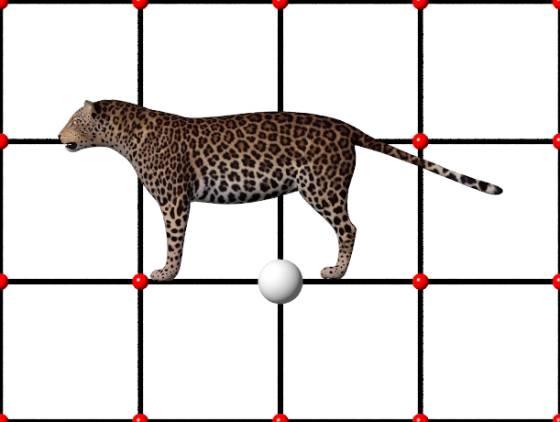 Leopard10_e_metaseq_POV_scene_w560h422q30.jpg