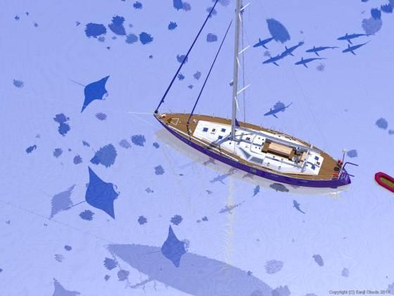 南海の白砂の海に錨泊する70ftヨットの周りを泳ぐマンタ、ナポレオンフィッシュ、ブルーシャーク