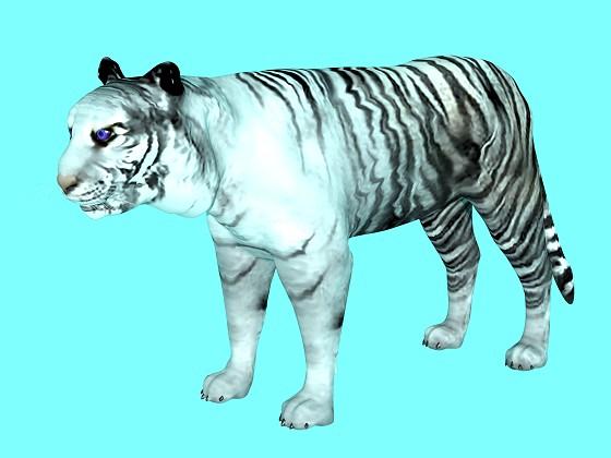 White_Tiger_e9_2016_08_30_14_08_00_w560h420q10.jpg