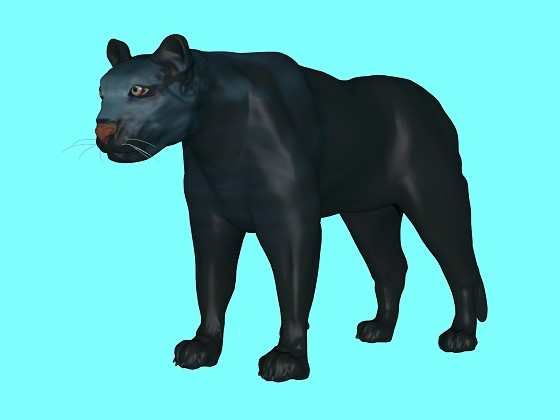 Black_Panther_e31_2015_12_25_18_17_48_w560h420q10.jpg