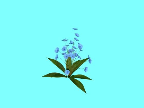 Flowers_N110314_e2_A_2016_08_26_16_52_04_w560h420q10.jpg