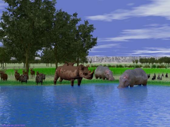 水辺で出合った野生動物