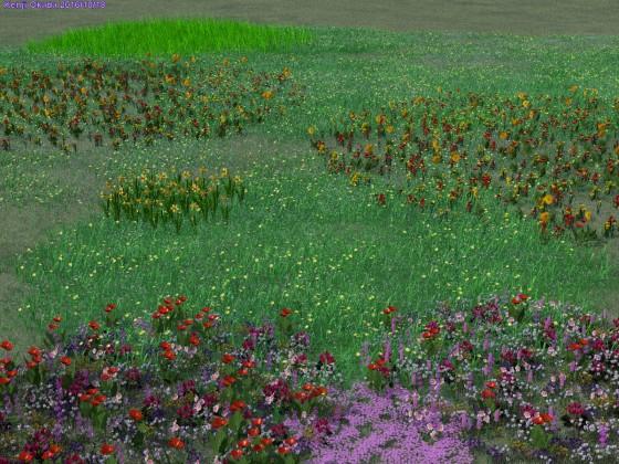 春の花が満開の草原