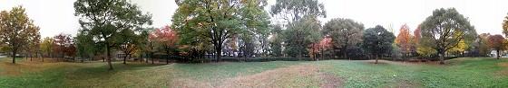 紅葉が始まった上坂部西公園の360度パノラマ写真