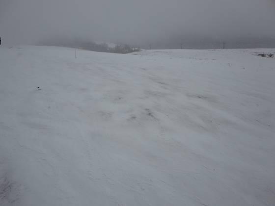 2017-01-09_1557_鐘の鳴る丘第2ゲレンデ・ブッシュと地面が見える_IMG_7224_s.JPG