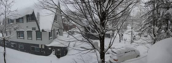 2017-01-15_0941_雪降り_bind_s.jpg
