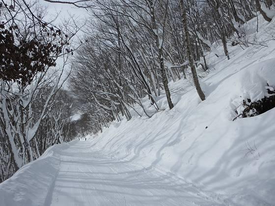 2017-01-16_1327_白樺ゲレンデからハンの木コースへ向かう林道_IMG_7434_s.JPG