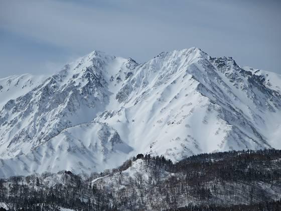 2017-02-22_1156_栂の森ゲレンデ最上部から・白馬鑓ヶ岳+杓子岳_IMG_8092_s.JPG