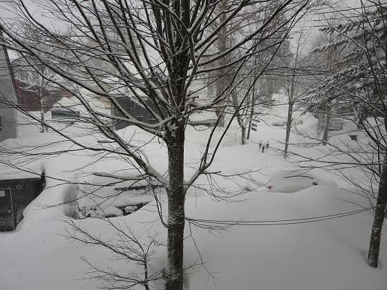 2017-02-24_0658_部屋から見た雪の様子_IMG_8114_s.JPG