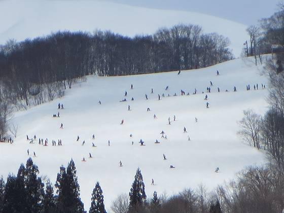 2017-02-26_1028_鐘の鳴る丘第2ゲレンデからズームでハンの木ゲレンデの人の群れ_IMG_8273_ts.JPG