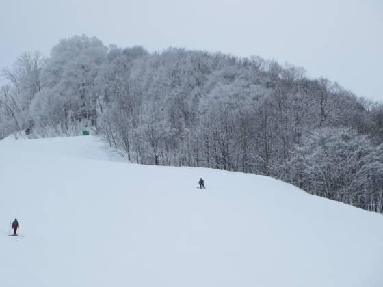 2017-02-27_0906_ハンの木ゲレンデ急斜面周辺の霧氷_IMG_8326_s.JPG