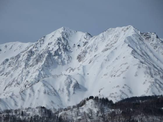 2017-03-01_0934_栂の森ゲレンデ最上部から杓子岳+白馬鑓ヶ岳_IMG_8465_s.JPG