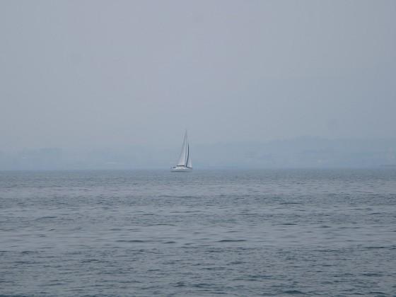 2017-05-31_1123_左舷後方に大型艇_IMG_0428_s.JPG