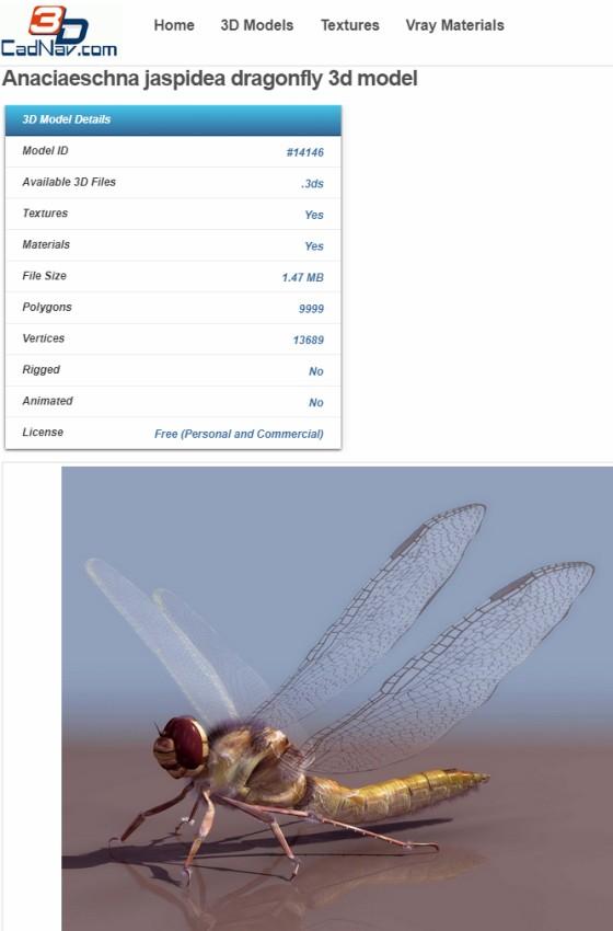 CadNav_Anaciaeschna_jaspidea_dragonfly_ts.jpg